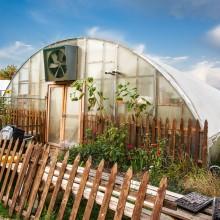 Campus greenhouses