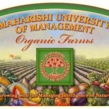 Much of the organic food served in the dining hall is frown locally on campus