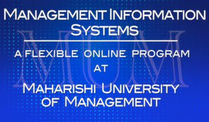 management_information_systems_--_online_program_for_man