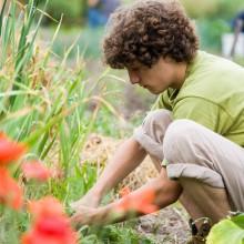 student-gardening