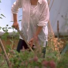 student-gardening3