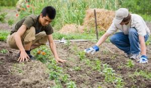 students-gardening