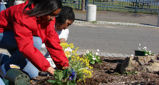 Planting_Flowers_00