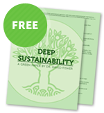 Deep Sustainability download