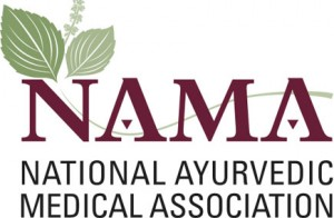 NAMA Logo_2007 copy